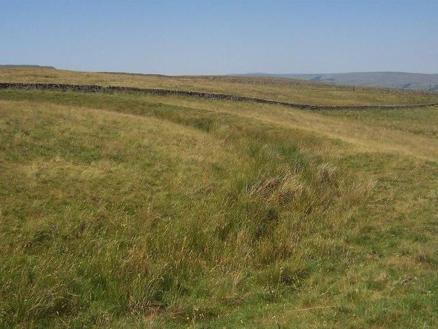Castle Dykes Henge