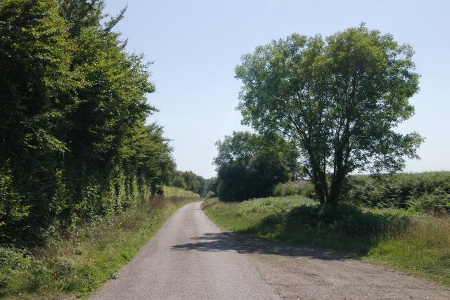 Road near Moorlands Farm, Sidbury