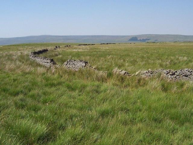 Worton Pasture