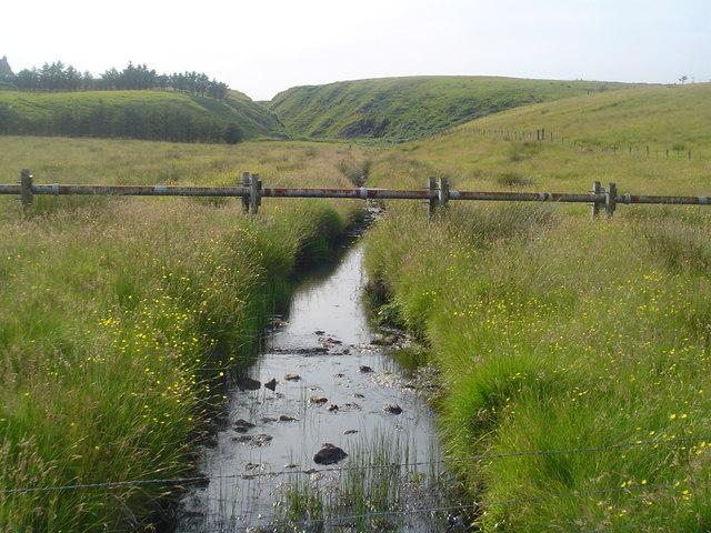 Stream and Glen, Upper Coll