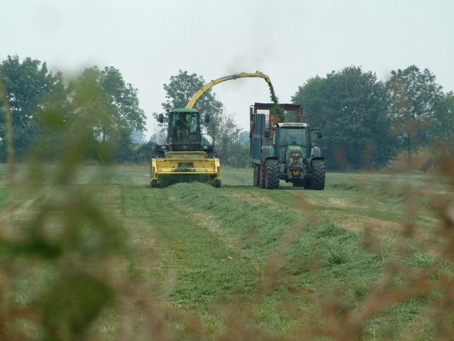 Farm Activity, Ashwell