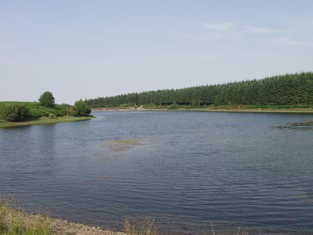 Pendinas Reservoir, Llandegla Forest