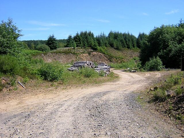 Quarry in Kielder Forest