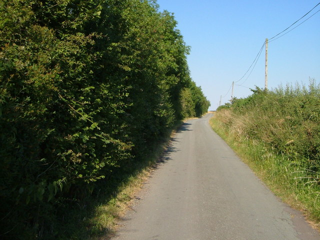 Chebsey - the lane to Shallowford