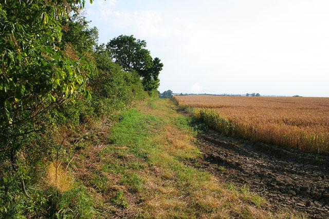 Public bridleway to Billesdon Lodge Farm