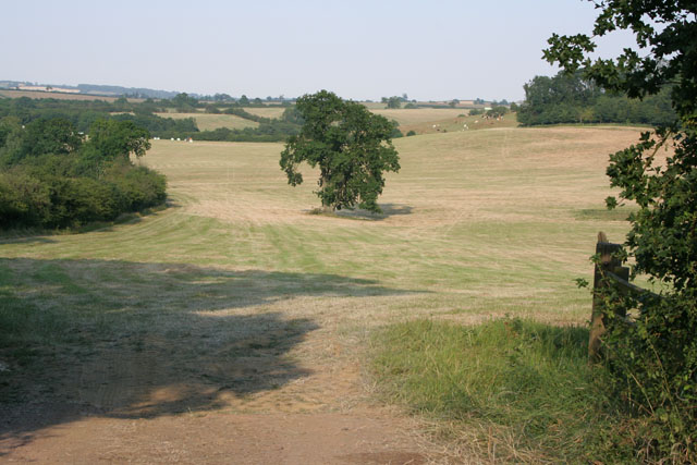 Farmland near Tilton on the Hill