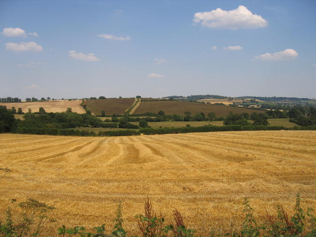 Hay harvest near Barton-on-the-Heath