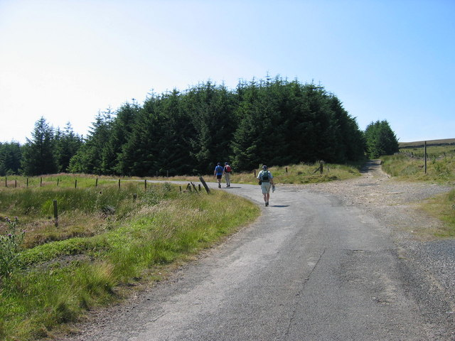 Road from Middlehope Lodge