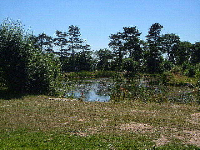 Fishing pool at Leighton