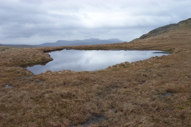 Small pool between Gallt Yr Ogof and Y Foel Goch