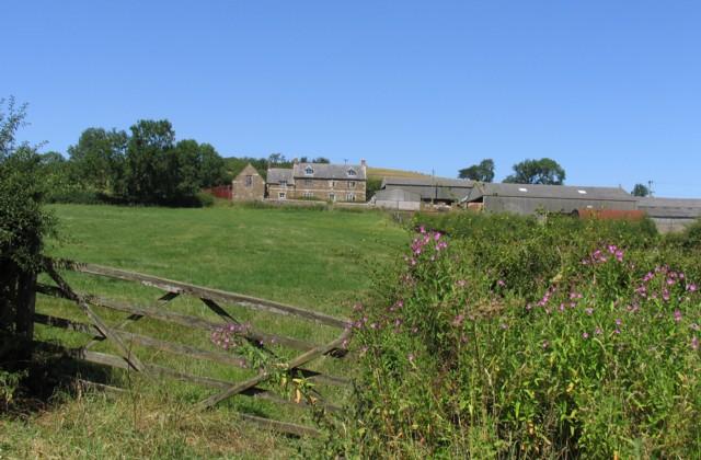 Robin-a-Tiptoe Farm