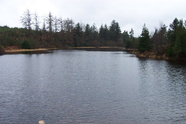 Small lake in Gwydr Forest