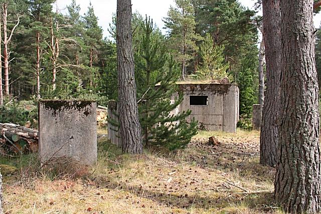 Pillbox, Lossie Forest