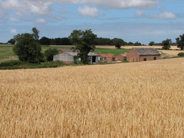 Dairy Farm, Itteringham