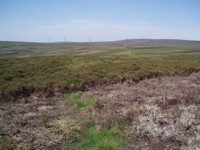 Edge of newly burnt moorland