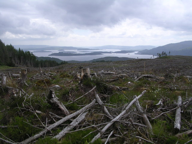 Summit of Coille Mhor looking across Loch Lomond