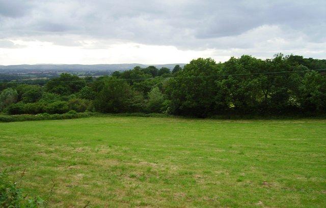 Field off Caynham Road.