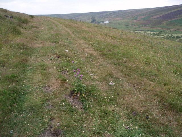 Herring Road