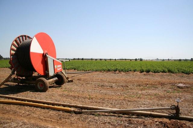 Irrigating Lincolnshire Potatoes