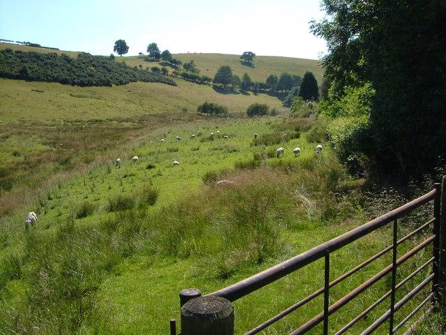 Nant Llys valley at Wern-y-Glyn