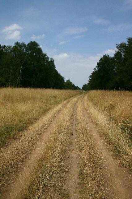 Icknield Way