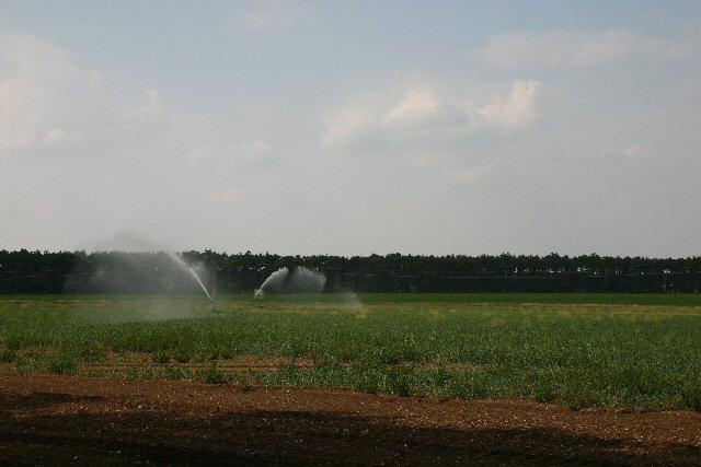 Water shortage?