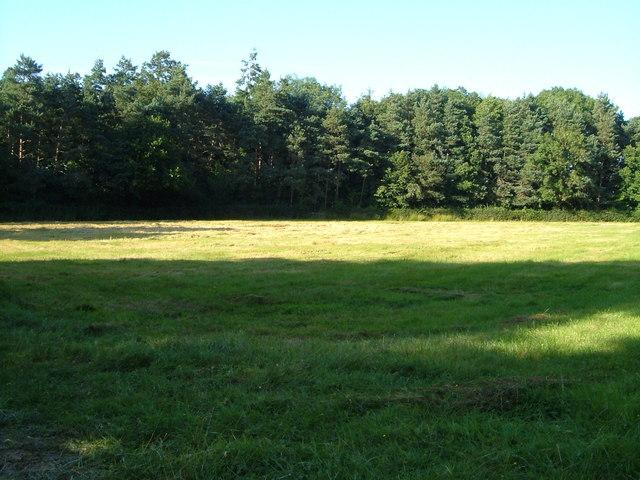 Field near Poulton