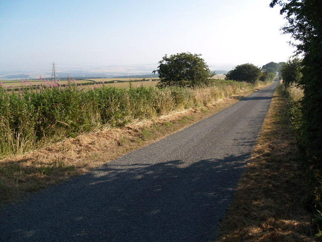The Lane at Broomley Fell