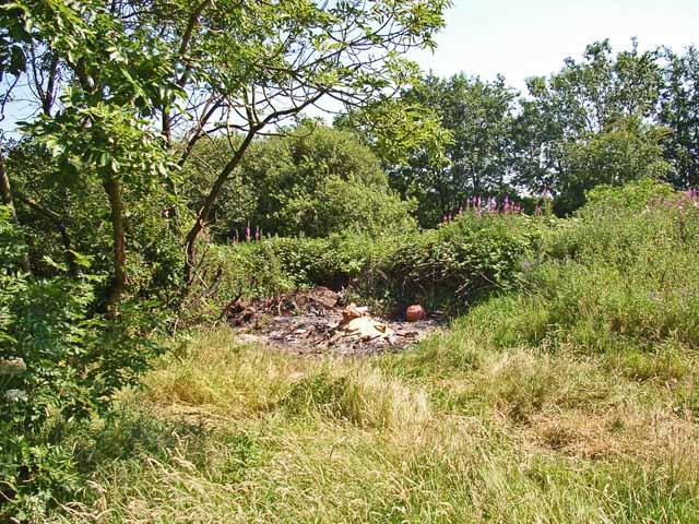 Waste land near Studholme