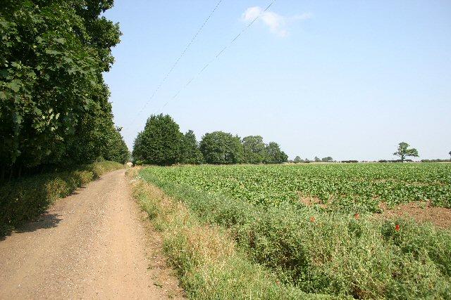 Byway to Elveden