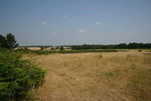 Barnham Heath