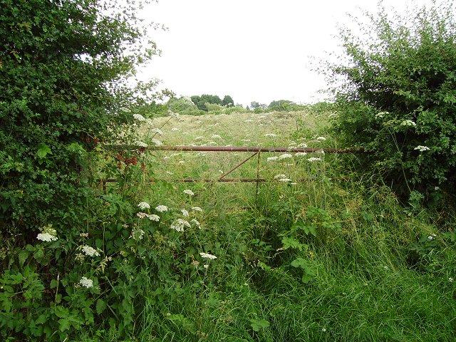 Disused gate