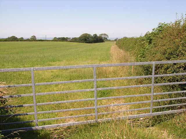 Field near Oughterby