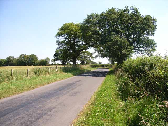 Country road near Great Orton