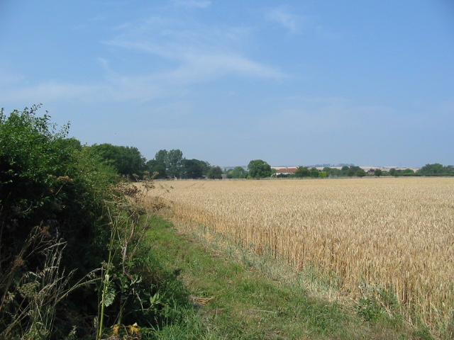 Arable land adjacent to the B1261