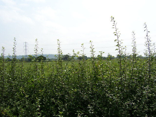 View to the south from Barrow Lane