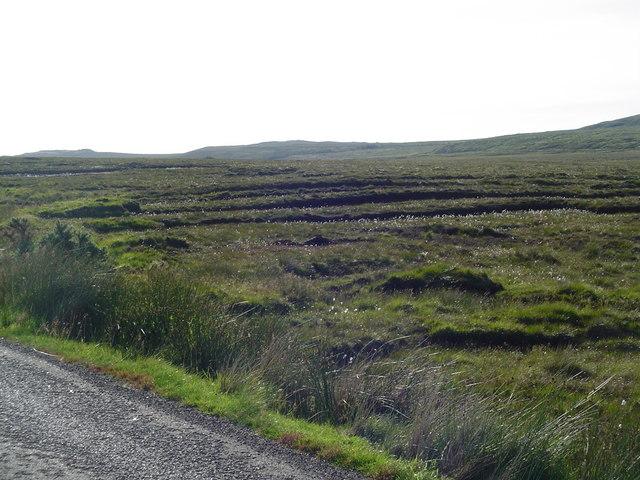 Peat Banks beside Pentland Road