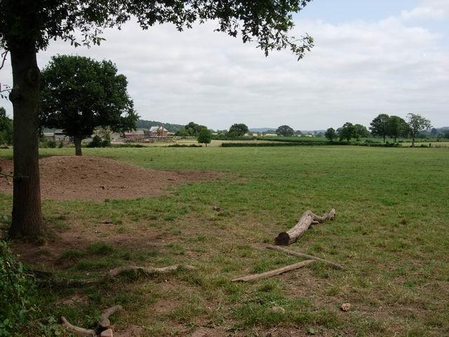 Cayo Farm