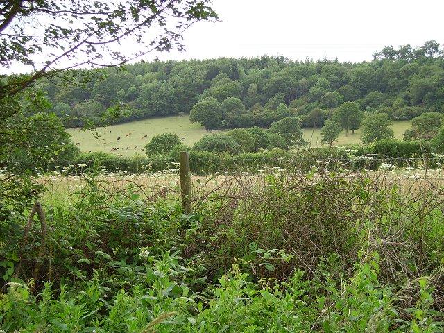 Limestone hills, Aston