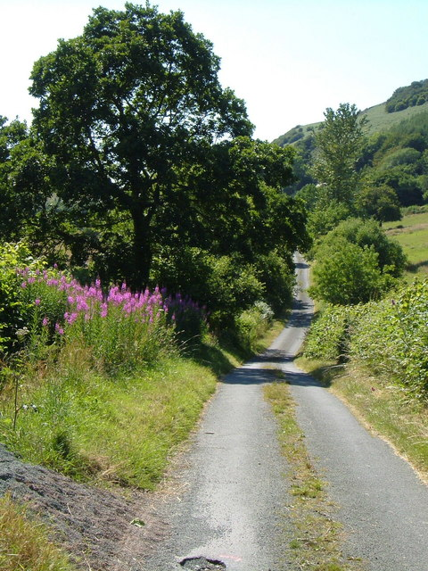 Lane at Gwern y Glyn