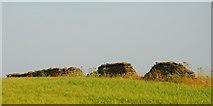 SN7501 : Ruined drystone wall off Gilfach Road by Cedwyn Davies