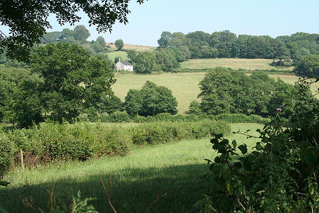 Upottery: towards Williambeer Farm