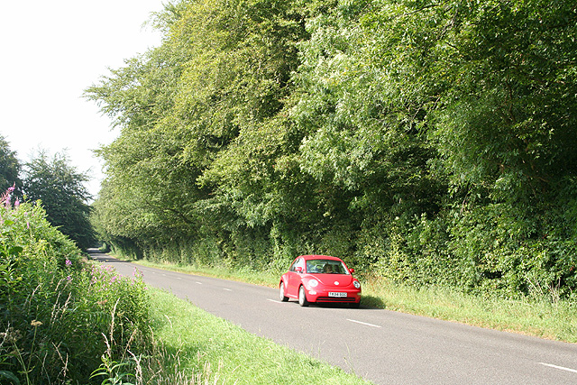 Churchstanton: the Honiton road