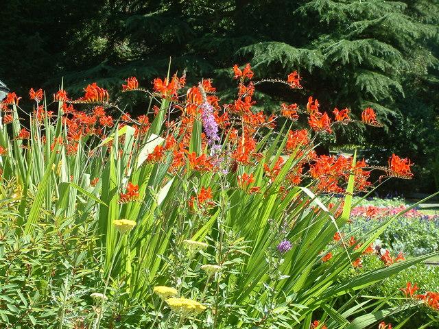 Castle Park Gardens, Frodsham