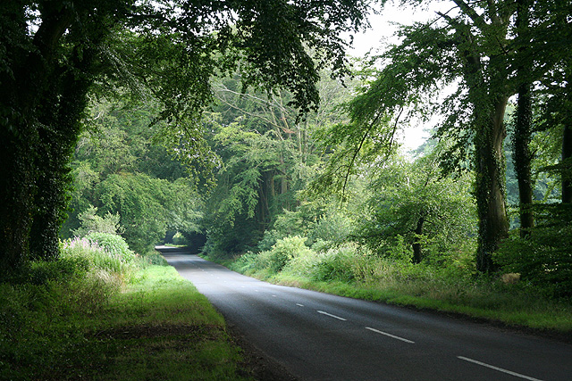 Churchstanton: the road to Churchingford