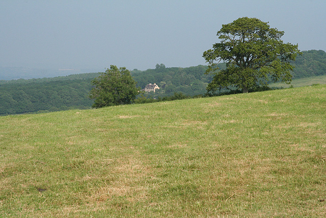 Pitminster: on Adcombe Hill