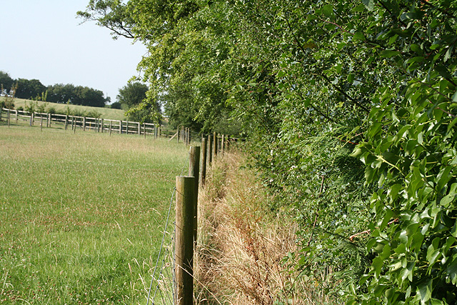 Pitminster: footpath at Feltham