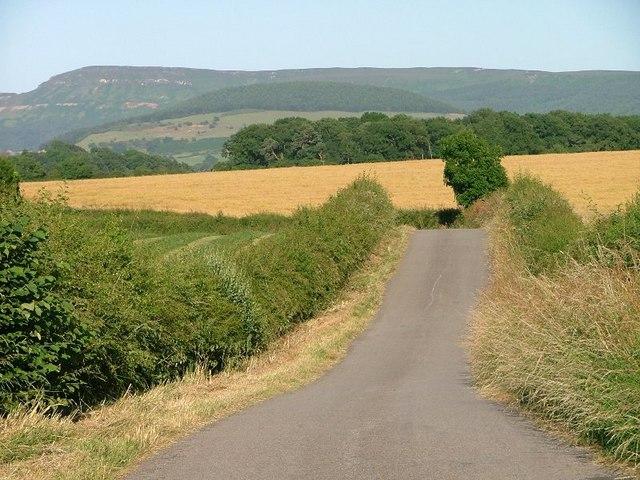 Parson Back Lane