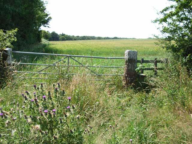 Field near Port Carlisle
