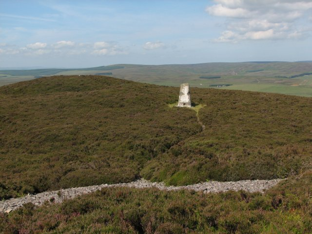 Trig Point, Dirrington Great Law